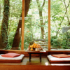 Feng Shui in the Northeast in 2011